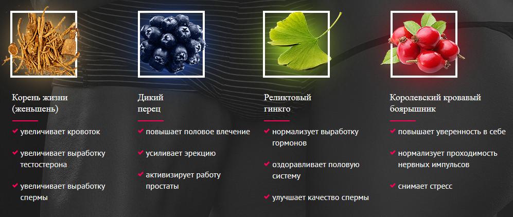 Состав Биг Зиллы