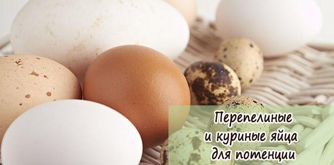 Перепелиные и куриные яйца для потенции