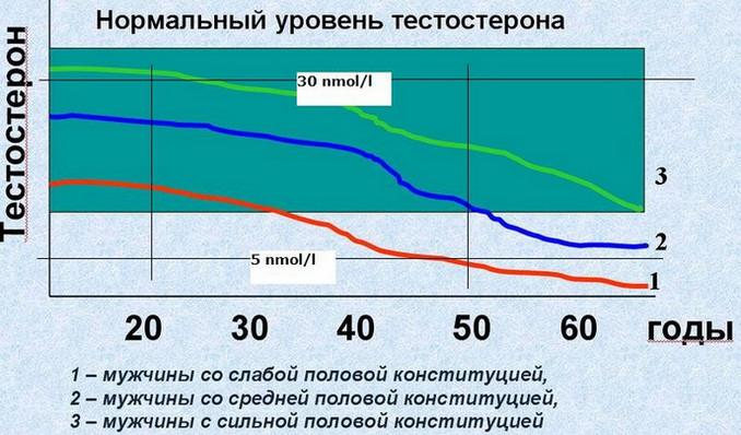 Нормальный уровень тестостерона в крови у мужчины