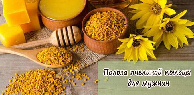 Чем полезна пчелиная пыльца для мужчин и как применять?