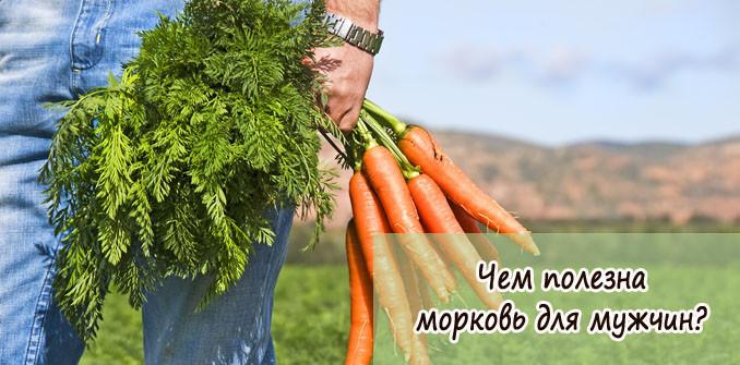 Чем полезна морковь для мужчин