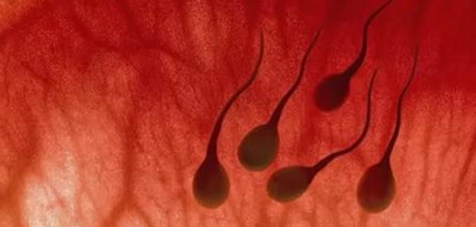 В сперме буроватого цвета следы