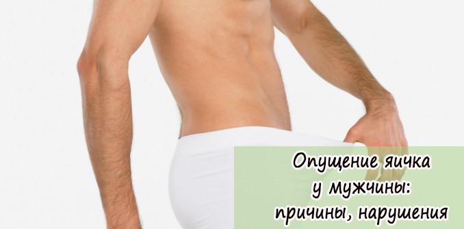 Опущение яичка у мужчины: причины