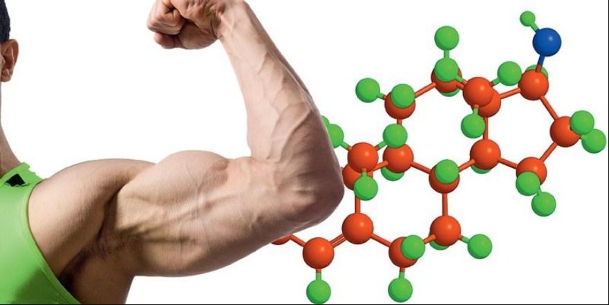 тестостерон и его норма