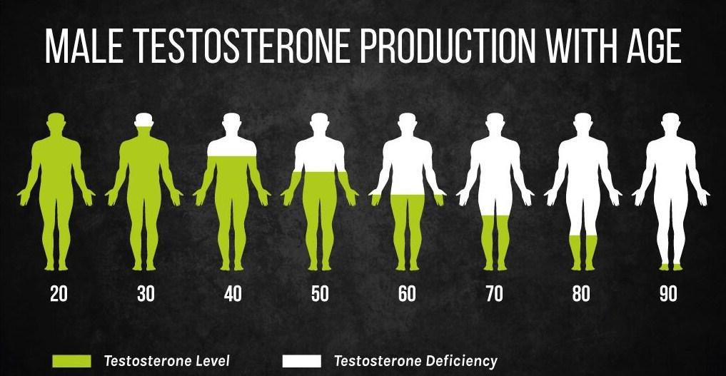 снижение тестостерона с возрастом