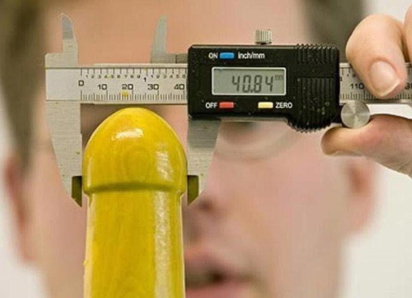 диаметр пениса